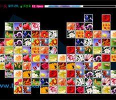 Bloemen Mahjong